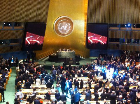 Sustainable Development Goals adopted 2015